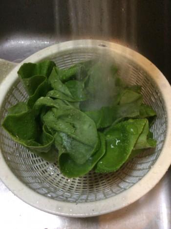 サラダ菜で包むオクラ鶏つくねサンド