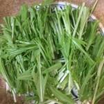 水菜のしゃきしゃき感を残してえぐみを取る簡単で美味しい茹で方。(写真説明付き)