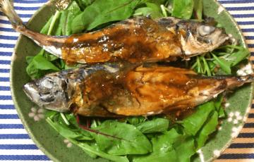 美味シーズン。ふっくら鯵とゆず胡椒ぽん酢ソース(糖質4.3g)