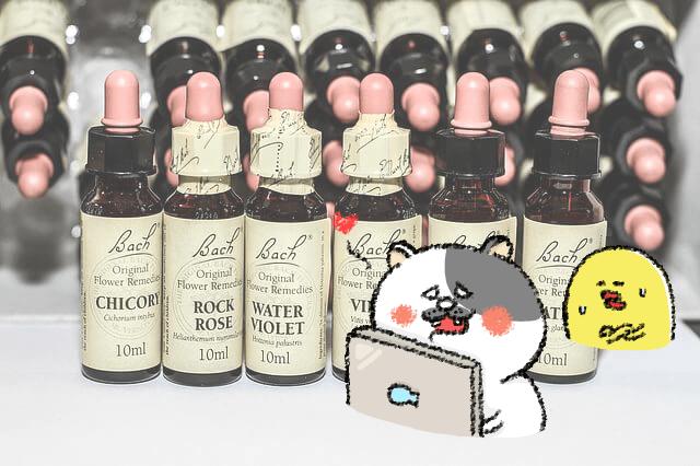 ダイエット雑談第45回 とどまれ欲望☆抑えろサプリ完璧主義!