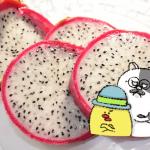 ローカボ調査日誌(18) 全面戦争だ☆糖質制限中の大人ニキビ!