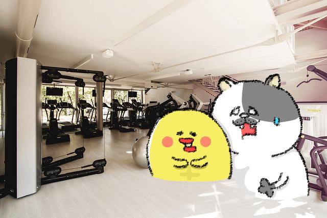 ダイエット雑談第54回 いざ効率化☆効いてる箇所だけ虐め抜け!