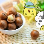 ローカボ調査日誌(32) 間食活用☆ナッツのカロリー・糖質一覧表!