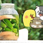 ダイエット雑談第59回 圧倒的ハマリっぷり☆お菓子vsお漬物戦争!