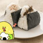 ダイエット雑談第66回 開発・難航☆めざせ新オニギリ!