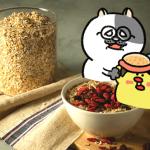 ローカボ調査日誌(85) レッツ大好物!初めて食べようオートミールの魅力(後編)