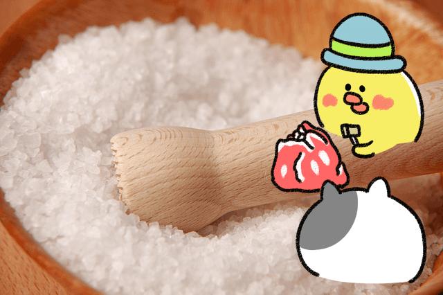 ローカボ調査日誌(98) これって良い塩?悪い塩?抜群体内改善!(後編)