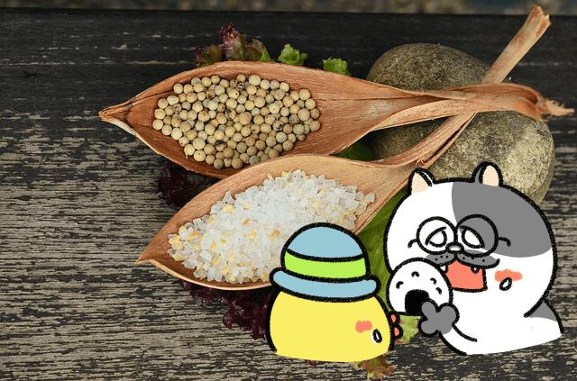 ローカボ調査日誌(96) これって良い塩?悪い塩?抜群体内改善!(前編)