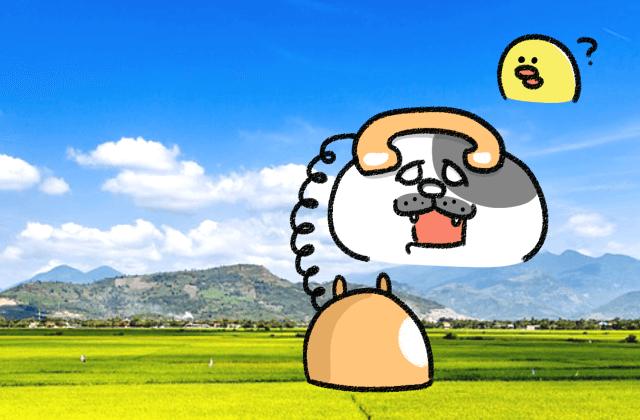 ダイエット雑談第122回 心の理解者☆大切家族コミュニケーション!(前半)