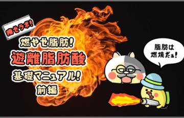 痩せラボ!燃やせ脂肪!遊離脂肪酸基礎マニュアル!(前編)