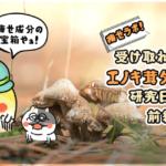 痩せラボ!受け取れ栄養!エノキ茸ダイエット研究日誌!(前編)