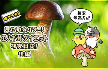 痩せラボ!受け取れ栄養!エノキ茸ダイエット研究日誌!(後編)