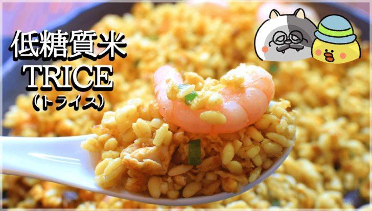驚異の米感95%!TRICE(トライス)辛口実食&絶品アレンジレシピ!