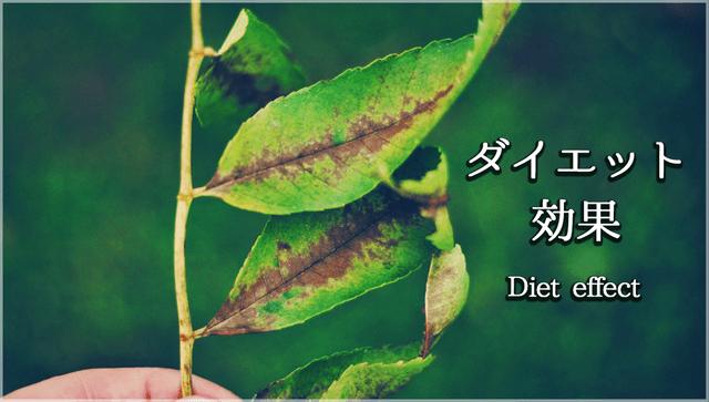 桑の葉のダイエット効果とは