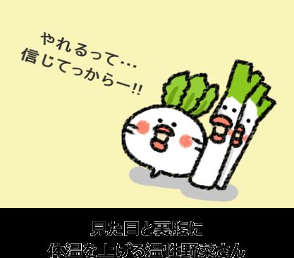 見た目と裏腹に 体温を上げる温性野菜さん