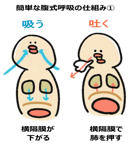 簡単な腹式呼吸を行う