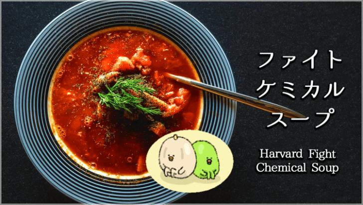 イラストで分かるハーバード式ファイトケミカルスープの超効果的な作り方