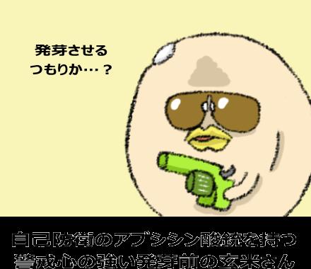 自己防衛のアブシシン酸銃を持つ 警戒心の強い発芽前の玄米さん