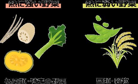 熱に強い野菜と熱に弱い野菜