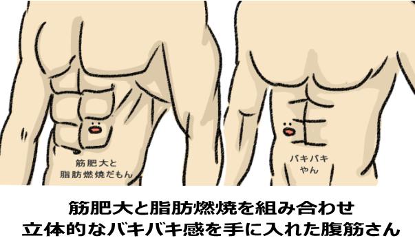 厚みのあるバキバキ腹筋と厚みのないバキバキ腹筋