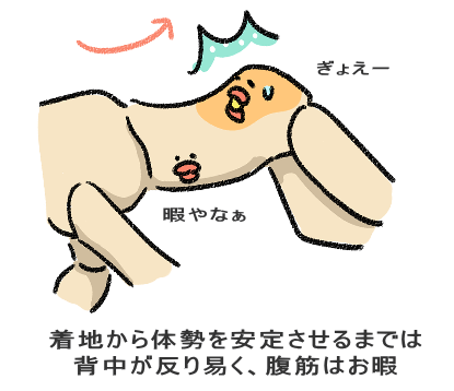 着地から体勢を安定させるまでは 背中が反り易く、腹筋はお暇