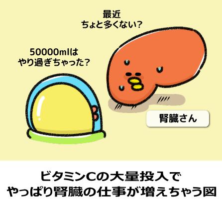ビタミンCの大量投入で やっぱり腎臓の仕事が増えちゃう図