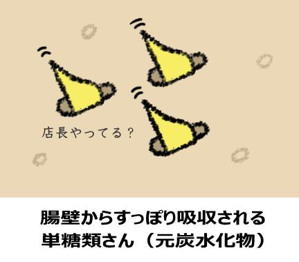 小腸に吸収される単糖類さん(元炭水化物)