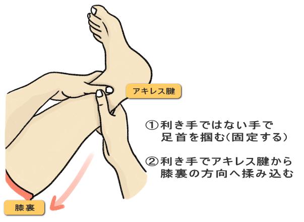 ➀利き手ではない手で   足首を掴む(固定する) ②利き手でアキレス腱から   膝裏の方向へ揉み込む