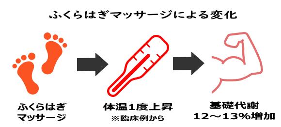 ふくらはぎマッサージ→体温1度上昇➡基礎代謝12~13%上昇
