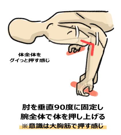 肘を垂直90度に固定し 腕全体(意識は大胸筋)で体を押し上げる