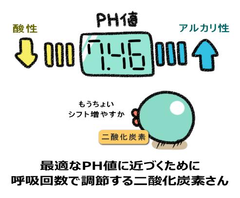 最適なPH値に近づくために 呼吸回数で調節する二酸化炭素さん