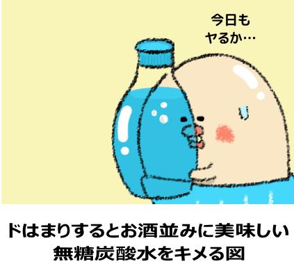 無糖炭酸水をとことん楽しむ図