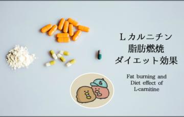 イラストで分かるLカルニチンの脂肪燃焼・ダイエット効果