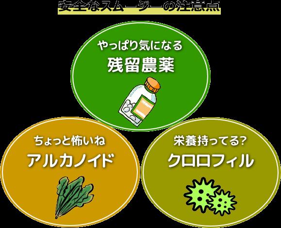 スムージーに気になる農薬クロロフィルアルカロイド