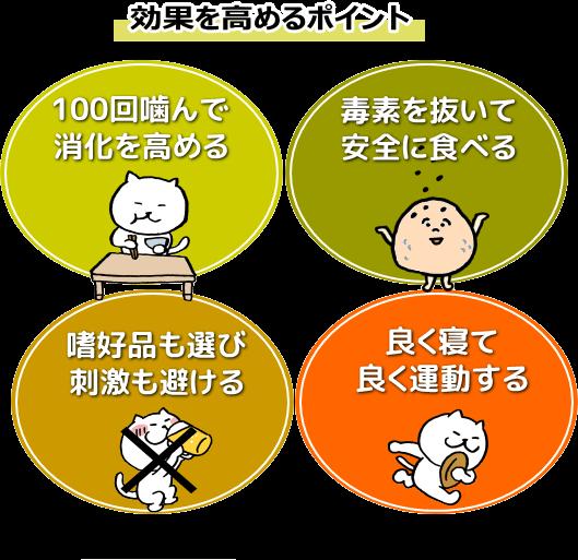 玄米7号食の効果を最大化するルール