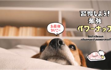 イラストで分かる15分で超効果的なパワーナップ昼寝の方法