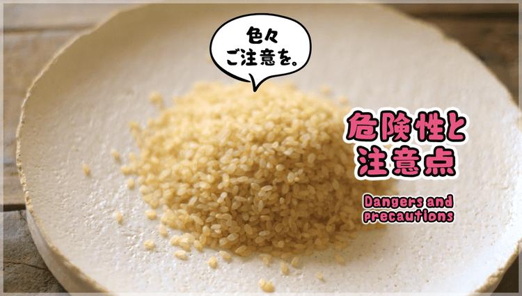 玄米7号食の注意点と危険性